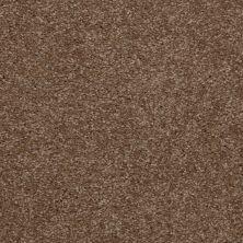 Shaw Floors SFA Versatile Design II Jute 00703_Q4689
