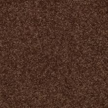 Shaw Floors SFA Versatile Design II Mocha Chip 00705_Q4689