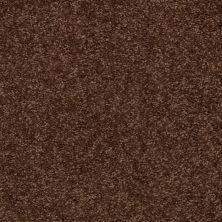 Shaw Floors SFA Versatile Design II Mocha Chip 00705_Q4689