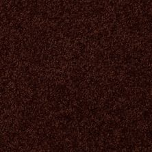 Shaw Floors SFA Versatile Design II Fresh Coffee 00708_Q4689