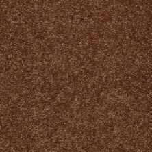 Shaw Floors SFA Versatile Design II Toasty 00710_Q4689