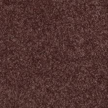 Shaw Floors SFA Versatile Design II Plum 00900_Q4689