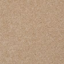 Shaw Floors SFA Versatile Design III Sugar Cookie 00105_Q4690