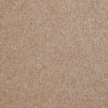 Shaw Floors SFA Versatile Design III Muffin 00106_Q4690