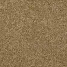 Shaw Floors SFA Versatile Design III Celery 00300_Q4690
