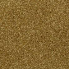 Shaw Floors SFA Versatile Design III Sprout 00301_Q4690