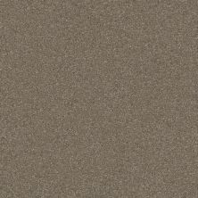Shaw Floors Queen Harborfields II 12′ Field Stone 00111_Q4720