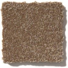Shaw Floors Queen Harborfields II 12′ Jute 00703_Q4720