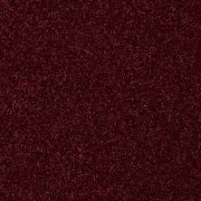 Shaw Floors Queen Harborfields II 12′ Raspberry 00804_Q4720
