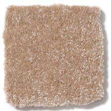 Shaw Floors Queen Harborfields II 15′ Muffin 00106_Q4721