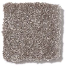 Shaw Floors Queen Harborfields II 15′ Field Stone 00111_Q4721