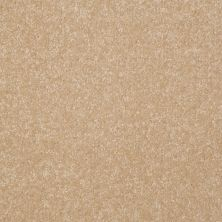 Shaw Floors Queen Harborfields III 12′ Silk 00104_Q4722