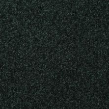 Shaw Floors Queen Harborfields III 12′ Emerald 00308_Q4722