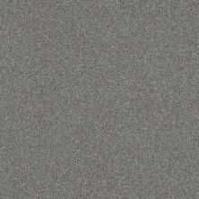 Shaw Floors Queen Harborfields III 12′ Pewter 00501_Q4722