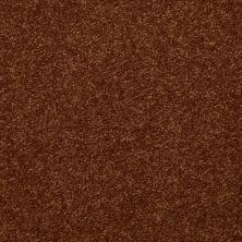 Shaw Floors Queen Harborfields III 12′ Gingerbread 00602_Q4722