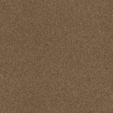 Shaw Floors Queen Harborfields III 12′ Jute 00703_Q4722