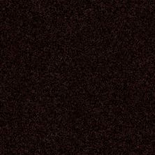 Shaw Floors Queen Harborfields III 12′ Dark Roast 00709_Q4722
