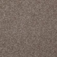 Shaw Floors Queen Harborfields III 15′ Field Stone 00111_Q4723