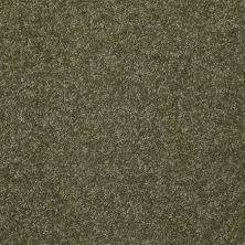 Shaw Floors Queen Harborfields III 15′ Sage Leaf 00302_Q4723