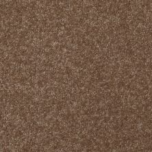 Shaw Floors Queen Harborfields III 15′ Jute 00703_Q4723