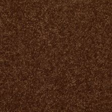 Shaw Floors Queen Harborfields III 15′ Patina 00707_Q4723