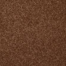 Shaw Floors Queen Harborfields III 15′ Toasty 00710_Q4723