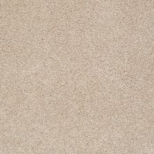 Shaw Floors Queen Versatile Design I 15′ Fresco 00109_Q4784