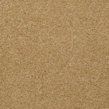 Shaw Floors Queen Versatile Design I 15′ Butter 00200_Q4784