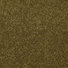 Shaw Floors Queen Versatile Design I 15′ Green Apple 00303_Q4784