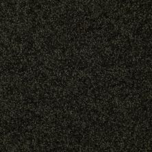 Shaw Floors Queen Versatile Design I 15′ Hunters Ridge 00305_Q4784