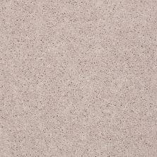 Shaw Floors Queen Point Guard 12′ Moon Beam 00104_Q4855