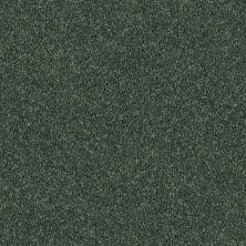 Shaw Floors Queen Point Guard 12′ Going Green 00340_Q4855