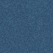 Shaw Floors Queen Point Guard 12′ Indigo 00441_Q4855
