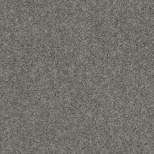 Shaw Floors Queen Point Guard 12′ Ink Spot 00501_Q4855
