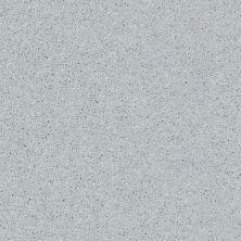 Shaw Floors Queen Point Guard 12′ Dove 00540_Q4855
