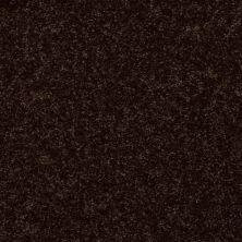 Shaw Floors Queen Point Guard 12′ Coffee Bean 00705_Q4855