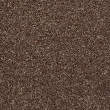 Shaw Floors Queen Point Guard 15′ Cattail 00702_Q4885