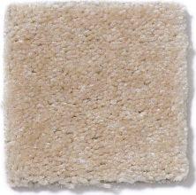Shaw Floors Queen Newport Dried Ginger 01453_Q4978