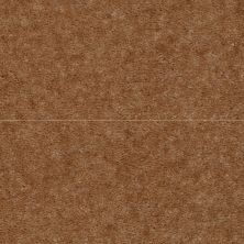 Shaw Floors Queen Newport Sequoia Brown 02446_Q4978