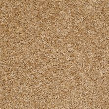 Shaw Floors Shaw Design Center Pacifica Wheat Field 00201_QC228