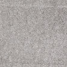 Shaw Floors Shaw Design Center Pacifica Sterling 00500_QC228