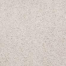Shaw Floors Apd/Sdc Haderlea Fine Lace 00100_QC314