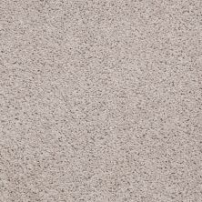 Shaw Floors Apd/Sdc Haderlea Pebble 00102_QC314