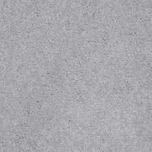 Shaw Floors Shaw Design Center All In Silver Mist 00520_QC317