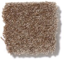 Shaw Floors Shaw Design Center Highly Refined II Jute 00703_QC375