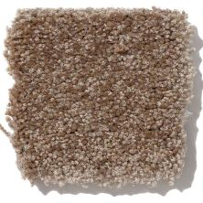Shaw Floors Shaw Design Center Highly Refined III Jute 00703_QC376