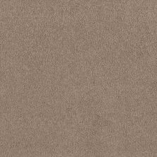 Shaw Floors Shaw Design Center Sweet Valley I 12′ Soft Shadow 00105_QC420