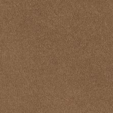 Shaw Floors Shaw Design Center Sweet Valley I 12′ Peanut Brittle 00702_QC420