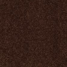 Shaw Floors Shaw Design Center Sweet Valley I 12′ Coffee Bean 00711_QC420