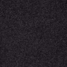 Shaw Floors Shaw Design Center Sweet Valley II 12′ Graphite 00503_QC422